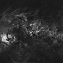 Cygnus H-alpha mosaic,                                Rafael Schmall