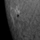 Sun 20210508 active region,                                Günther Eder
