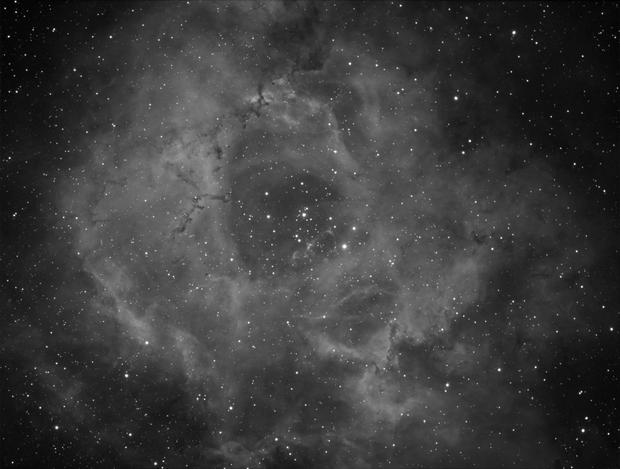 Rosette Nebula,                                Mirko M