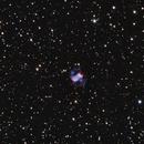 M76,                                Brian Ritchie