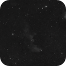 Witches head in Orion - cropped,                                Ian Dixon