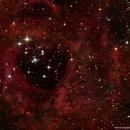 Rosette nebula,                                phoenixfabricio07