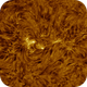 AR2759 in High Res, HA, 04-04-2020,                                Martin (Marty) Wise