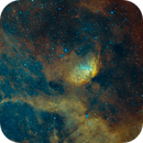 SH2-101 - The Tulip Nebula and region - Hubble palette SHO,                                Patrice B