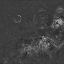 Cygnus in H-Alpha,                                TC_Fenua