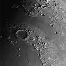 Cratere Plato,                                Alessandro Biasia