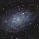 M33 Triangulum Galaxy,                                mistateo