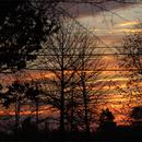 Sunrise 11/23/2013,                                rigel123