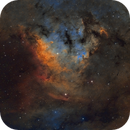 NGC 7822, Cederblad 214,                                Barry Wilson