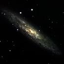 NGC 253,                                GadalRene