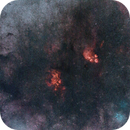 Lobster and Cat`s Paw Nebula on 135mm and L-eNhance - Starless Version,                                Samuel Müller