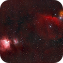 Gems in Orion - The Great Orion Nebula & Horsehead Nebula,                                Kurt Zeppetello