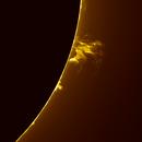 Solar Prominence 2020.07.01,                                Izaac da Silva Leite
