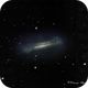 NGC 3628 Hamburger Galaxy in Leo,                                Francois Theriault