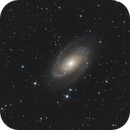Messier 81 (first attempt),                                Manfred Ferstl
