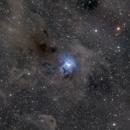 First Light of NGC 7023,                                AdrienDB