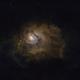 M8- Lagoon Nebula,                                moorent