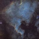 NGC 7000 SHO,                                LAMAGAT Frederic