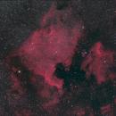 NGC 7000: The North America Nebula,                                Doug Griffith