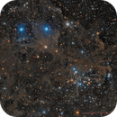NGC 1342 - Open Cluster in Perseus (Full redo),                                Paddy Gilliland