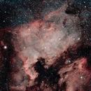 North American Nebula,                                Seth