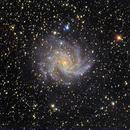 NGC6946-color-ridotta,                                Giuseppe Petralia