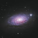 Sunflower Galaxy (M63),                                Kevin Whiteside