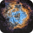 NGC2237 en SHO (Caldwell 49),                                Georges