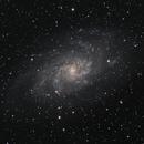 Messier 33,                                Miles Zhou