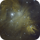 Fox Fur Nebula/Cone Nebula Medium Field in HOO Blend,                                mikefulb