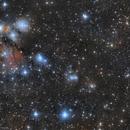 NGC 2170 Angel Nebula/NGC 2182/NGC 2185,                                Marc Verhoeven
