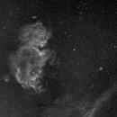 The Soul Nebula,                                AstroKitty