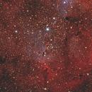 IC 1396 Elephant's Trunk Nebula,                                ViktorBG