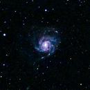 M101 The Pinwheel Galaxy,                                mtbkr123