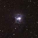 NGC7023 Iris Nebula,                                Sven Heinisch