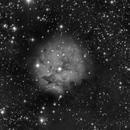 cocoon nebula,                                angelo mazzotti