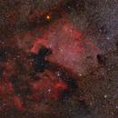 "NGC 7000 & IC 5070 - The North America & The Pelican Nebulae,                                Sebastian ""BastiH"" Hinz"