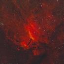 Prawn Nebula IC4628 in Scorpius,                                Göran Nilsson
