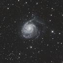 M101,                                Gabriel Wetzler