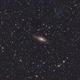 NGC7331,                                Friesenjung