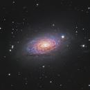 Messier 63 - the Sunflower Galaxy,                                Nico Augustin