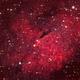 LBN 245 in Cygnus,                                GJL