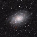 M33 Triangulum Galaxy,                                Peter Komatović
