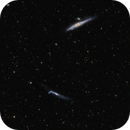 The NGC 4631 group /Whale and Hockey Stick glaxies,                                Francesco