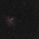 M16 - Nébuleuse de l'Aigle,                                William BELLEAU
