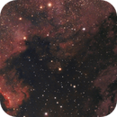 The Wall & The Pelican in Cygnus,                                G400