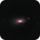 M63 Sunflower Galaxy @ 1600mm focal lenghth,                                urmymuse