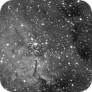 ngc6823 of 13th and 14th June 2021 - 615 60 secs unguided subs,                                Stefano Ciapetti