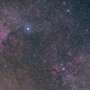 Cygnus widefield,                                Christian van den...