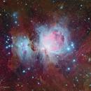 Great Orion Nebula,                                Michael Leung